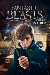 Nonton Fantastic Beasts and Where to Find Them (2016) Sub Indo Terbaru