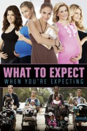 Nonton What to Expect When You're Expecting (2012) Sub Indo Terbaru